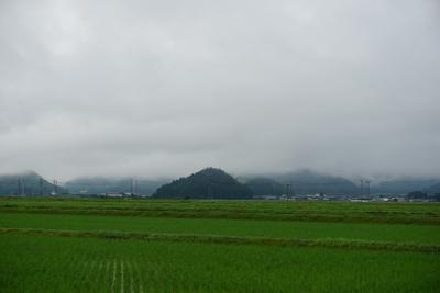 DSC05046-3.jpg